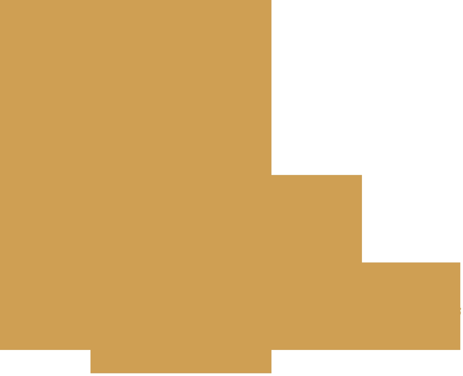 DMC Denmark map