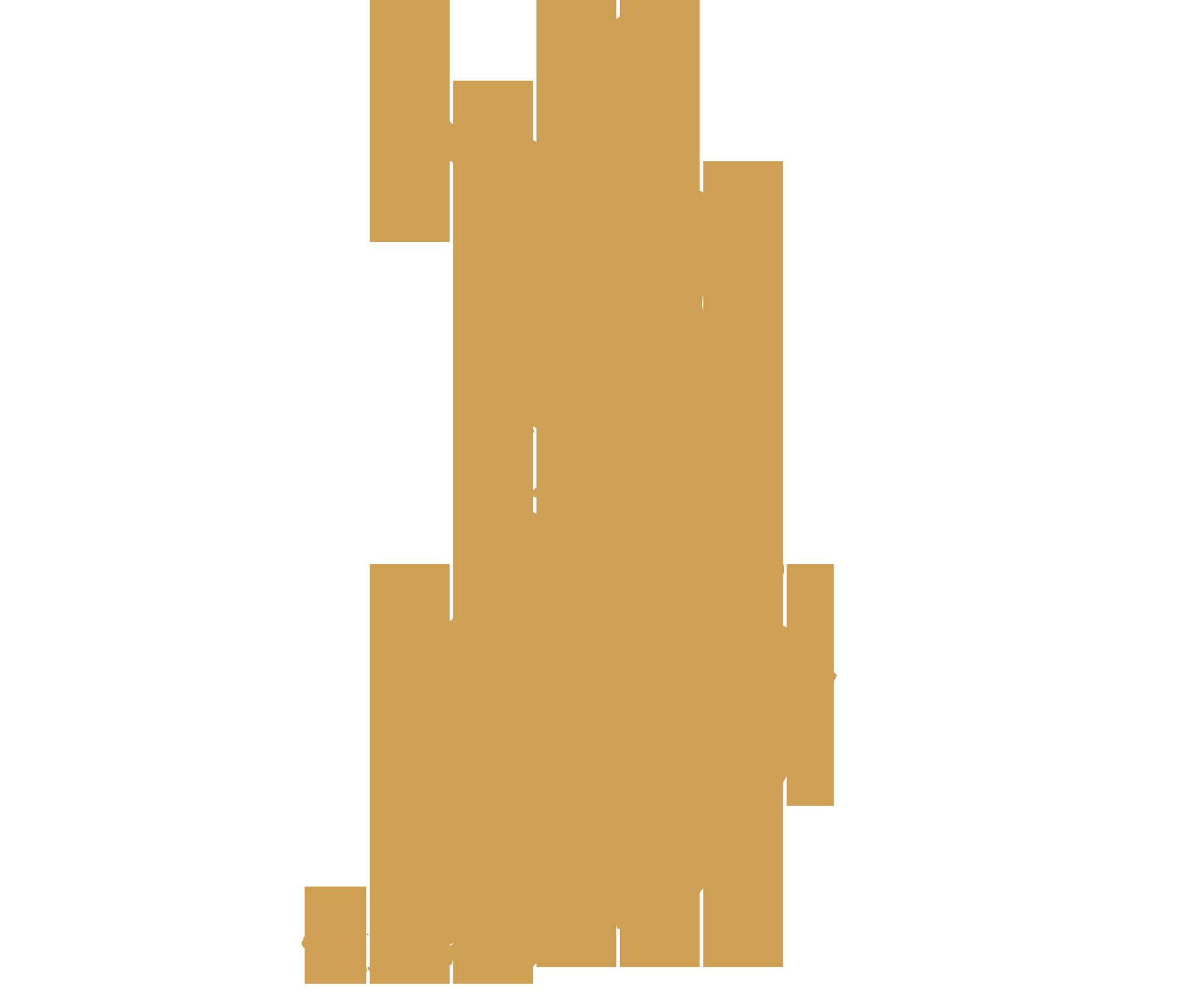 DMC Finland map