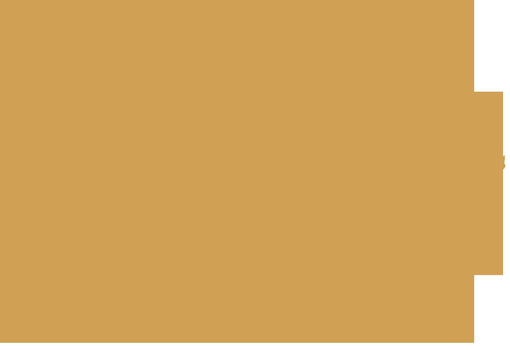 DMC Iceland map