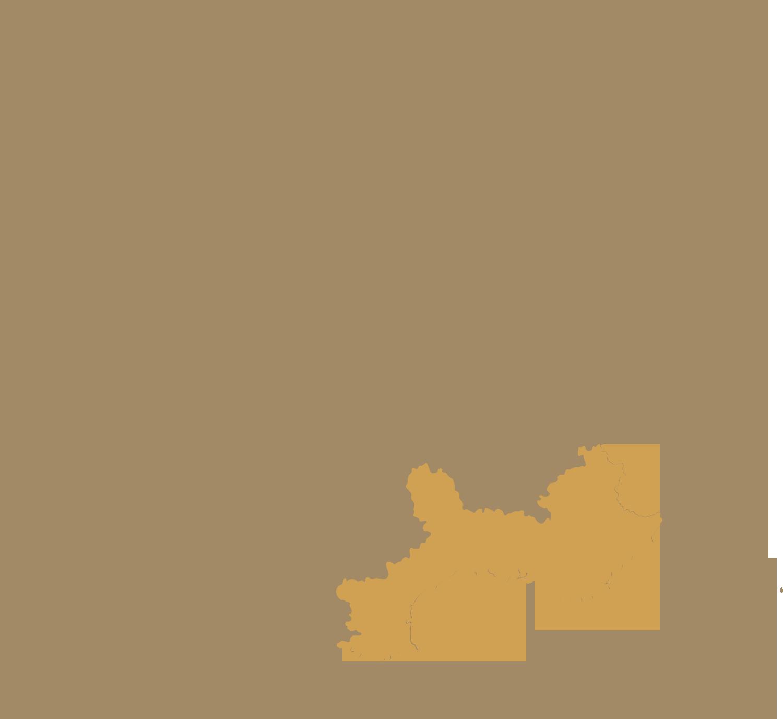 DMC Monaco map